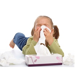 Air Purifiers for Hay Fever