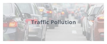 Traffic Pollution
